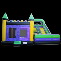 Inflatable Bouncer ManufacturerGB495
